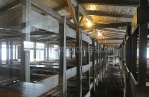 KZ Sachsenhausen 004